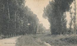 R R 382/       C P A  -MAUZE    (79) CANAL DU MIGNON - Mauze Sur Le Mignon