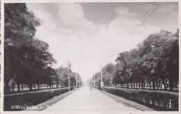 ROMANIA - Jimbolia 1937 - Bul. Regina Maria Ring - Romania