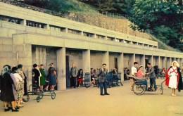 65 - Lourdes - Les Piscines - Lourdes