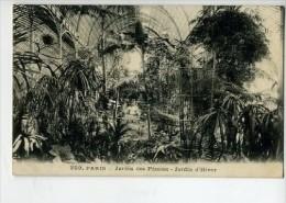 CP751680 - PARIS - Jardin Des Plantes - Jardin D'Hiver - Parks, Gärten