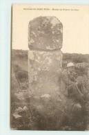 SAINT PONS (environs)  - Menhir De Picarel Le Haut. - Saint-Pons-de-Thomières