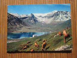 Le La De Tignes Et Grande-Motte (Savoie)Carte Postale Gd Format(20×15 Cm)cie Des Arts Photomécanique Paris - Sin Clasificación