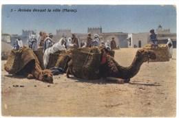 Marocco Arrivèe Devant La Ville - Altri