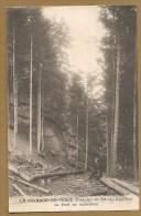 LE CHAMBON DE TENCE (Hte Loire) - La Forêt En Exploitation - Voyagée 1917 - FORÊT- BOIS - ARBRE -EXPLOITATION FORESTIERE - Le Chambon-sur-Lignon