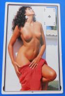 EROTIC ( Small Calendar ) Erotique Erotica Erotik Erotiek Sexy Sex Nude érotisme Petit Calendrier Calendario Kalender - Small : 1981-90