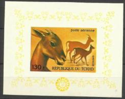 CHAD - 1972 FAUNA (GAZELLE) IMPERF S/S MNH ** - Chad (1960-...)