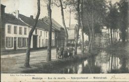Scherpenheuvel - Molenstraat - Windmolen - 1903 ( Verso Zien ) - Scherpenheuvel-Zichem