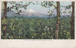 1900 CIRCA MT ORIZABA FROM CORDOVA MEXICO - THE AMERICAN MUSEUM OF NATIONAL HISTORY - Mexique