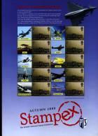 GREAT BRITAIN - 2008  SMILERS SHEET  STAMPEX AUTUMN - R.A.F. - Fogli Completi