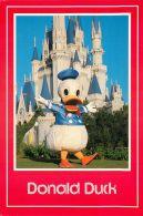 Donald Duck, DisneyWorld, Florida USA Postcard Used Posted To UK 1991 Stamp - Disneyworld