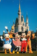 Donald Duck Mickey Minnie Goofy Pluto, DisneyWorld, Florida USA Postcard Used Posted To UK 1999 Stamp - Disneyworld