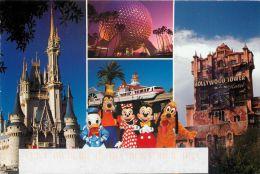 Multiview, DisneyWorld, Florida USA Postcard Used Posted To UK 2001 Stamp - Disneyworld