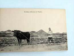 Carte Postale Ancienne : CHINA : Environs De NANKIN : Au Labour - China