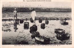 Cpa  ARCACHON, Mises Dans Les Filet Et Casiers, Les Huîtres Sont Enlevées Des Parc  M.D.(31.100) - Arcachon