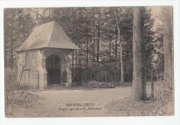 Meersel-Dreef : Kapel Van Den H. Antonius - Hoogstraten