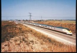 Le TGV Eurostar En Essai Sur La Ligne Nouvelle Pres De Calais - Frethun Le 8 Juillet 1993 - Treinen