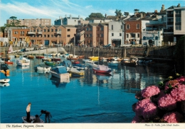 Harbour, Paignton, Devon, England Postcard John Hinde - Paignton