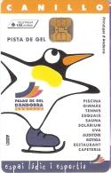 AND-110 TARJETA DE ANDORRA PISTA DE GEL (PINGUINO-PENGUIN) - Andorra