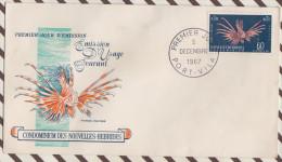 FDC 704  ENVELOPPE 1ER JOUR 1967 NOUVELLES HEBRIDES - FDC