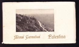 IL-94 MONS CARMELUS PALESTINA. BLOCK - Palestine