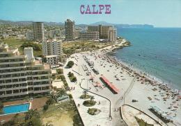 España--Alicante--1984--Calpe--Playa De Levante--a, Francia - Alicante