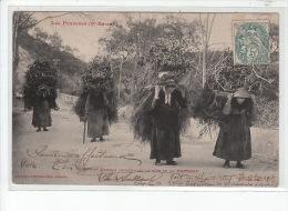 LES PYRENEES - Femmes Descendant Le Bois De La Montagne - Très Bon état - Frankrijk