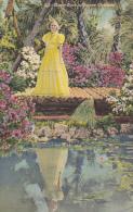 Mirror Pool In Dupree Gardens North Of Tampa Florida 1942 Curteich