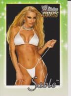 WWE 2003 Fleer Card SABLE With Sexy Bikini Wrestling Divine Divas - Trading Cards