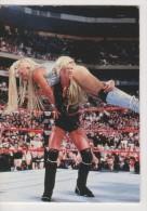 WWE 1998 Titan Cards Wrestling Diva SABLE Superstars Duocards - Trading Cards