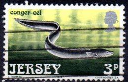 JERSEY 1973 Marine Life - 3p. - Conger Eel  FU - Jersey