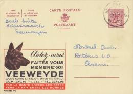 PUBLIBEL 1912°: ( VEEWEYDE ) : HOND,CHIEN,DOG, - Entiers Postaux