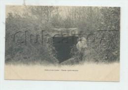 Janville-sur-Juine (91) : GP De La Pierre Levée Dolmen En 1905  PF - Otros Municipios