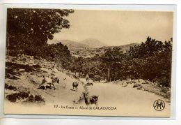 20 Route CALACUCCIA Carte Rare Troupeau Chevres  Homme Automobile 1920    /D08-2014 - Andere Gemeenten
