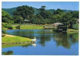 Tarijima Island - Japon
