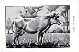 CHROMO, Pour éviter Les Maladies... (Vache De Jersey) - Chromos