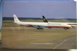 DC 8 73CF    TNT EXPRESS WORLDWIDE   N816EV - 1946-....: Moderne