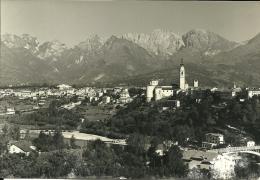 BELLUNO  Panorama Con Fiume Piave - Belluno