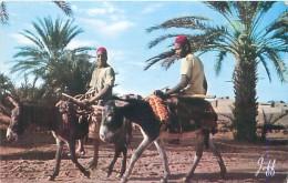 Pittoresque Arfique Du Nord - Algérie