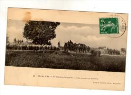 Cp , Militaria , Ecoles à Feu , En Attendant Les Ordres , Une Invasion De Moutons , Voyagée 1909 - Manovre