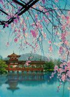 Heian Shrine, Kyoto, Japan Postcard - Kyoto