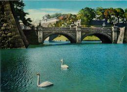 Imperial Palace, Tokyo, Japan Postcard - Tokio