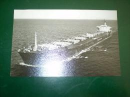 "Photographie De Bateau ""PROPONTIS 1973""  GE  N°31 -O5 - Cargos"