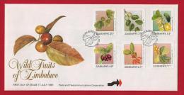 ZIMBABWE, 1991, Mint FDC, Wild Fruits Of Zimbabwe, 466-471 - Zimbabwe (1980-...)