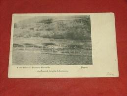 HERBEUMONT  -    Ardoisière  De Linglay    -  1902  - (2 Scans) - Herbeumont