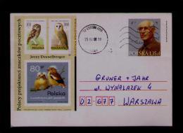 POLSKA Polen Mocho Owl Hibou Eule Rapaces Birds Oiseaux Animals Animaux Faune Fauna 2008 Postal Stationery  Sp2914 - Other