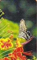 Taiwan Telephone IC Card IC00C003 Butterfly Nature - Taiwan (Formosa)