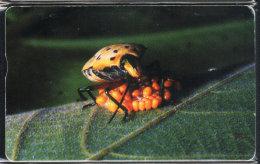 Taiwan Telephone IC Card IC03C039 Insect Nature - Taiwan (Formosa)