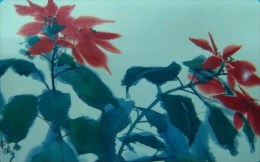 Taiwan Telephone IC Card IC00C002 X'mas Flower Poinsettia Painting - Taiwan (Formosa)