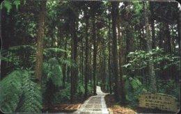 Taiwan Telephone IC Card IC07C027 Tree Forest Scenery - Taiwan (Formosa)