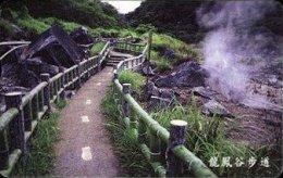 Taiwan Telephone IC Card IC08C018 Hot Spring Park Scenery - Taiwan (Formosa)
